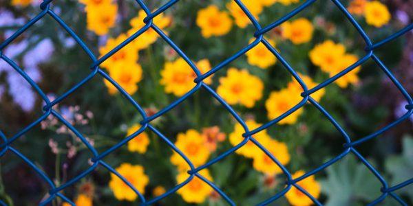 siatki ogrodowe